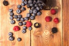 Frutta mista sana, mirtillo Bacche fresche, mora, raspa Fotografia Stock Libera da Diritti