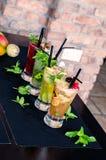 Frutta Mojito Immagine Stock Libera da Diritti