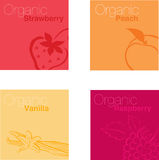 Frutta organica Fotografia Stock Libera da Diritti