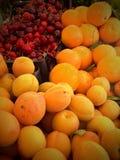 Frutta organica agli agricoltori Fotografia Stock