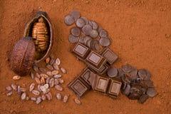 frutta, polvere e cioccolato del cacao 3d Fotografia Stock