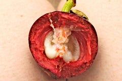 Frutta porpora del mangostano tagliata a metà Fotografia Stock Libera da Diritti