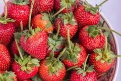 Frutta pulita della fragola rossa fresca Fotografia Stock