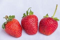 Frutta pulita della fragola rossa fresca Fotografie Stock Libere da Diritti