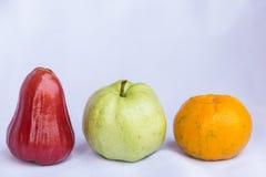 Frutta pulita fresca della mela di rosa rossa, della guaiava arancio e verde Fotografie Stock Libere da Diritti