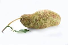 Frutta, pulutan tropicali o giaca Fotografia Stock Libera da Diritti