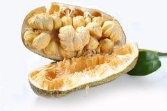 Frutta, pulutan tropicali o giaca Fotografia Stock