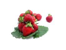 Frutta rossa della fragola Fotografie Stock Libere da Diritti