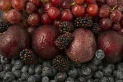 Frutta rossa e blu mista Fotografia Stock