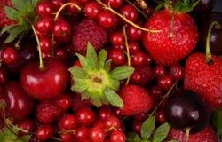 Frutta rossa fresca Fotografie Stock Libere da Diritti