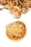 Frutta secca di cotogno del bengala. Fotografia Stock