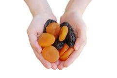 Frutta secca in mani delle donne Immagine Stock