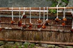 Frutta secca nel Giappone Fotografia Stock