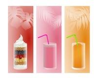 Frutta, smoothie e ghiaccio Fotografie Stock