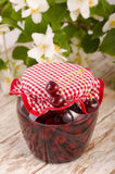 Frutta stufata ciliegia Immagine Stock