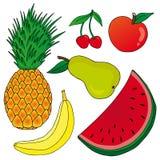 Frutta su fondo bianco Illustrazione di Stock