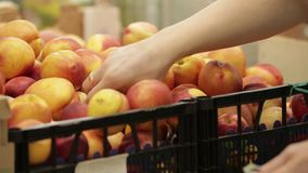 Frutta in supermercato video d archivio
