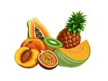 Frutta tropicale royalty illustrazione gratis