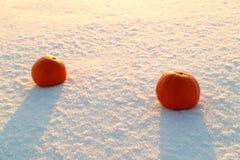 Frutta tropicale arancio arancio su neve ghiacciata due pezzi, neve fresca brillante nell'inverno Fotografie Stock