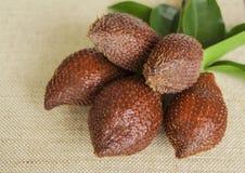 Frutta tropicale del serpente immagini stock libere da diritti