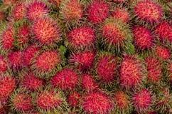 Frutta tropicale deliziosa dolce della frutta del Rambutan, gusto dolce Fotografie Stock