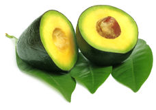 Frutta tropicale fresca di avacado Immagini Stock
