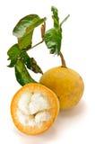 Frutta tropicale tailandese (santol) Fotografie Stock