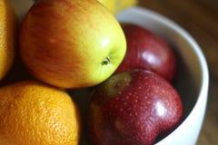 Frutta in una ciotola Immagine Stock Libera da Diritti