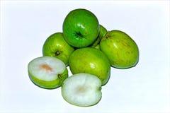 Frutta verde indiana fresca e dolce della giuggiola su fondo isolato bianco immagine stock