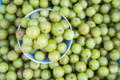 Frutta verde tailandese locale dell'uva spina di vista superiore nel mercato di Chiang Mai Fotografie Stock