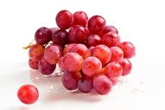 Frutta viola dell'uva Immagine Stock