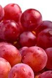 Frutta viola dell'uva Immagini Stock