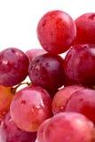 Frutta viola dell'uva Fotografie Stock