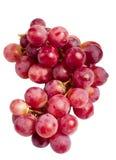 Frutta viola dell'uva Fotografia Stock Libera da Diritti