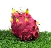 Frutta viva del drago Immagini Stock