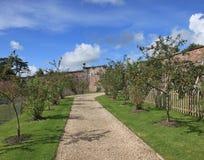 Frutteto inglese del giardino del paese Immagini Stock Libere da Diritti