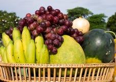 Frutti Fotografie Stock