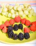 Frutti 11 Fotografie Stock Libere da Diritti