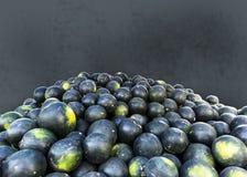 Frutti ampiamente popolari in India alla stagione estiva, che hanno un grande valore di alimentazione durante questa stagione cal immagine stock