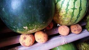 Frutti, anguria e santol indigeni Immagini Stock