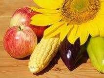 Frutti con le verdure ed il girasole Immagini Stock