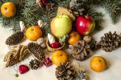 Frutti, dadi, pasticcerie, cioccolato con i vari coni coniferi Fotografia Stock Libera da Diritti