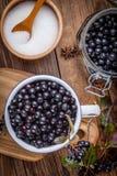 Frutti del chokeberry nero per elaborare fotografie stock