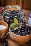 Frutti del chokeberry nero per elaborare immagine stock libera da diritti