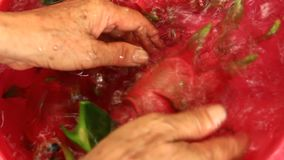 Frutti del drago del lavaggio archivi video