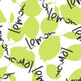 Frutti del limone e della limetta verde su fondo bianco Fotografia Stock Libera da Diritti