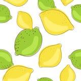 Frutti del limone e della limetta verde su fondo bianco Immagine Stock Libera da Diritti