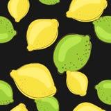 Frutti del limone e della limetta verde sul nero scuro Immagini Stock Libere da Diritti