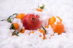 Frutti del melograno e dell'arancia Fotografie Stock Libere da Diritti