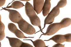 Frutti del tamarindo isolati su bianco Fotografia Stock Libera da Diritti